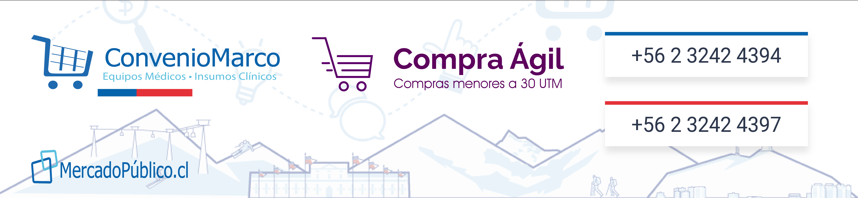 Mercado Publico COnvenio Marco Compra Agil